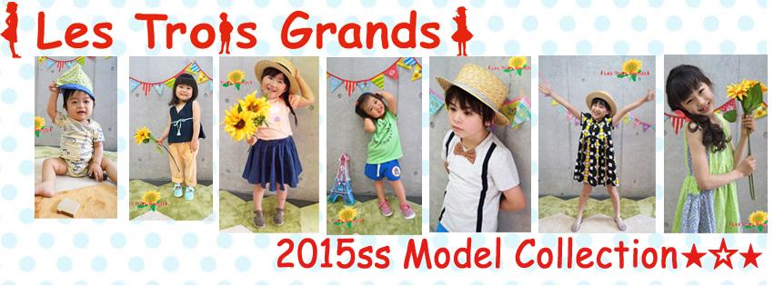 2015ssmodel