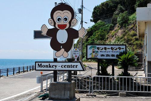 monkey-center_01